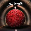 guillemots